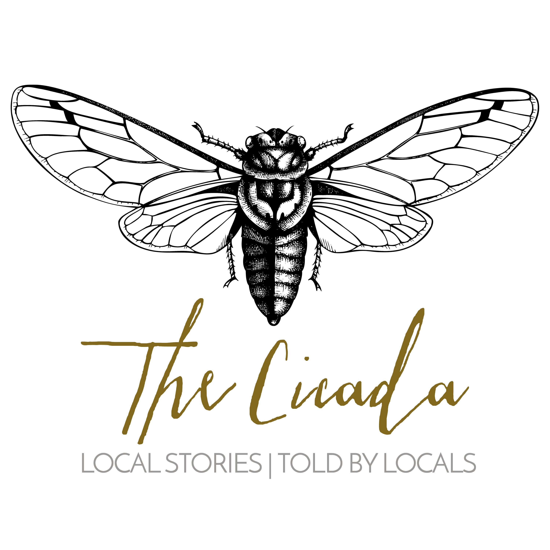 The Cicada Story Slam